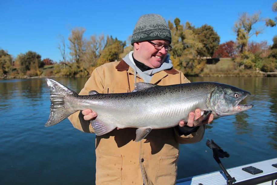 Three groups 39 vehemently oppose 39 agribusiness backed san for Salmon fishing sacramento river
