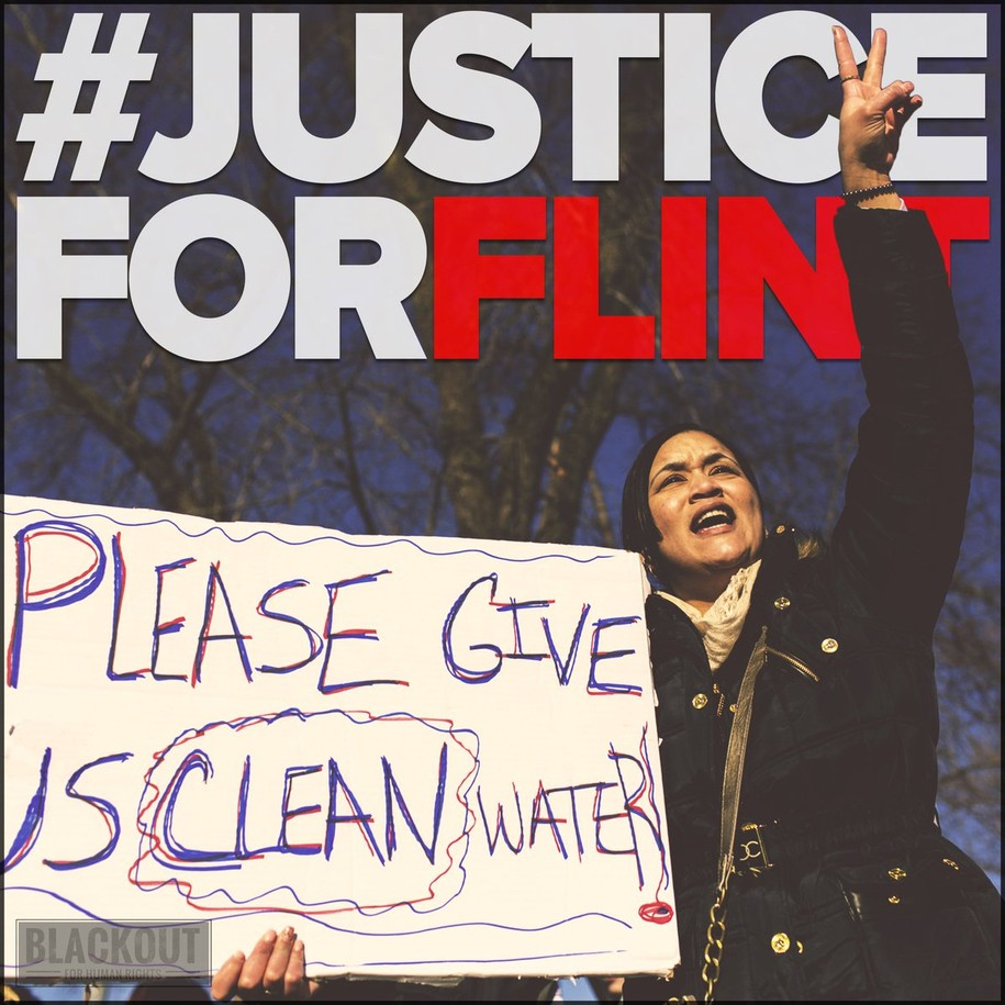 Image result for justice for flint