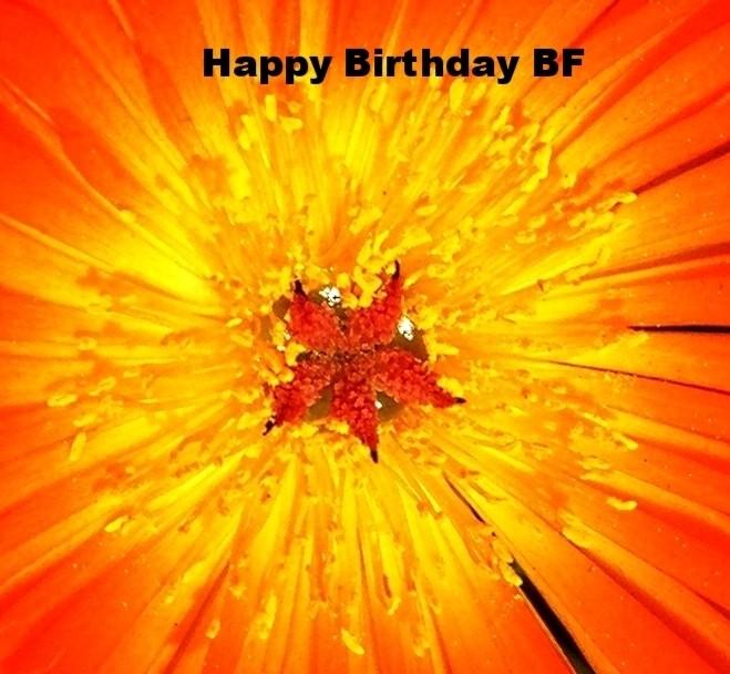 Today Is BFSkinner's Birthday! Sunday Is KosAbility