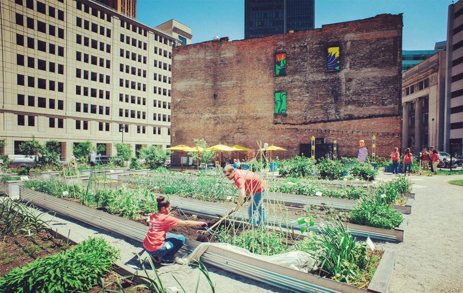 Urban Farming From Floating Food Forests To Vacant Lot Crops