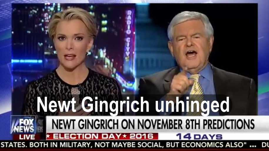 Newt_Gingrich_verbally_attacked_Fox_News_Megyn_Kelly_for_inferring_Trump_a_sexual_predator_(VIDEO).jpg