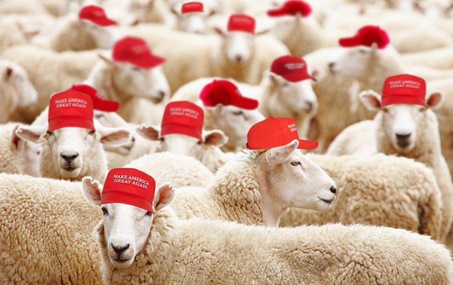 "Trump Supporter Chants ""JEW-S-A"" At Press Pen Daily Kos"