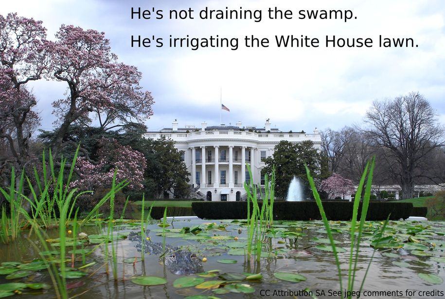 Cartoon trump unveils new plans for white house landscaping for White house garden design