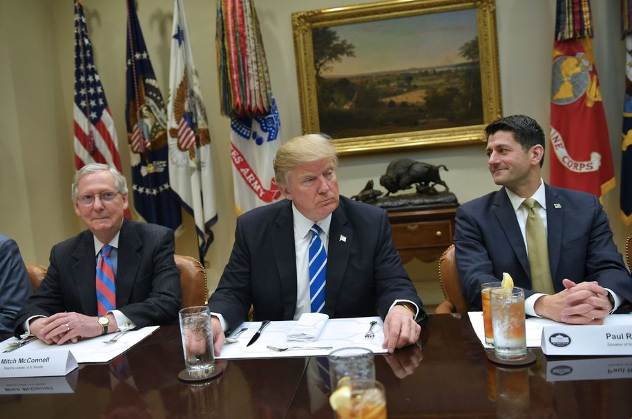 Image result for trumpcare destroyed