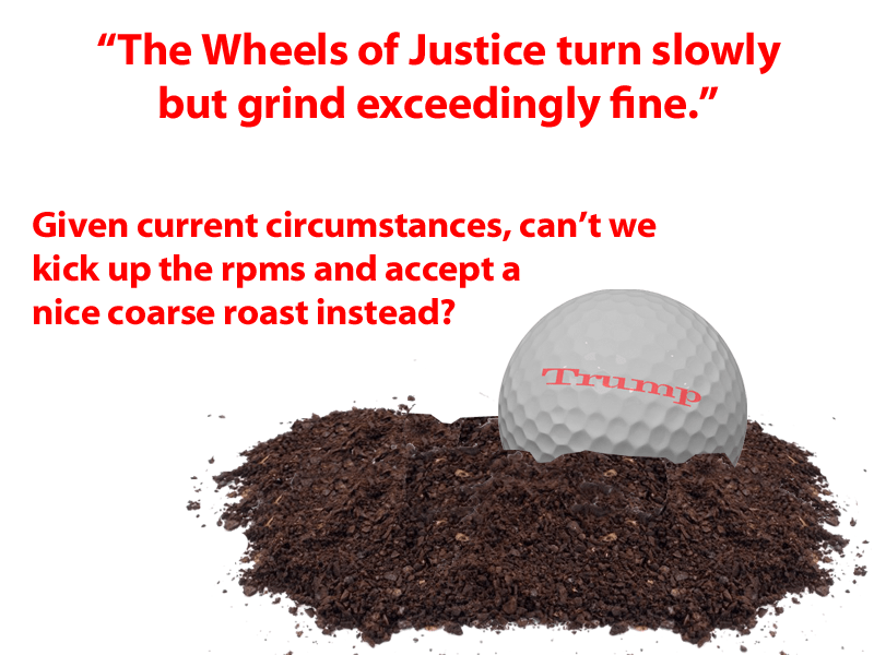 what does justice delayed is justice denied mean