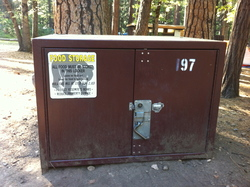 Bear boxes are used to store food and personal care items - anything with a scent - in Yosemite Valley.