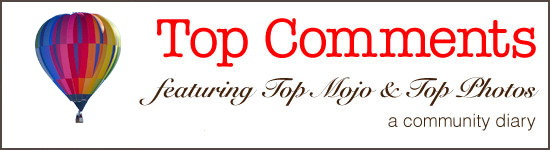 Banner for the community diary called Top Comments, a series that features the best comments at the site each day.