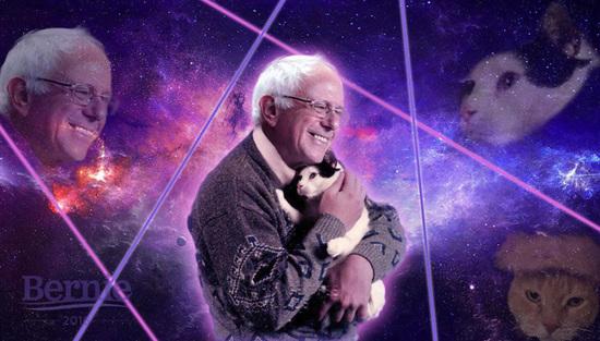 Bernie Sanders Wallpaper Download: Bernie Holding A Cat
