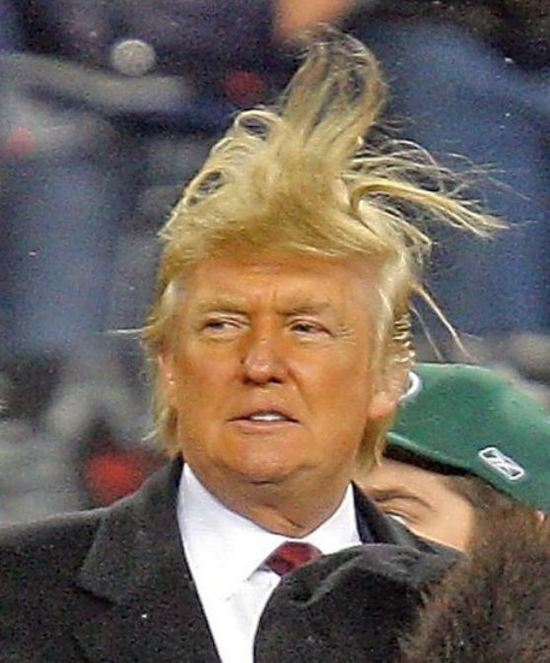 Image result for trump bad hair