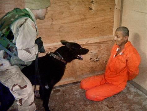 Abu_Ghraib_dog.jpg