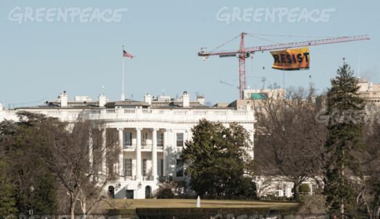 Greenpeace Resist Banner