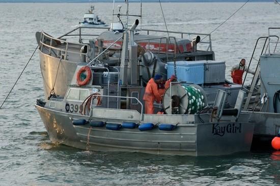Alaska Salmon, One Week in June, Commercial fishing boats, Nushagak Bay, Alaska