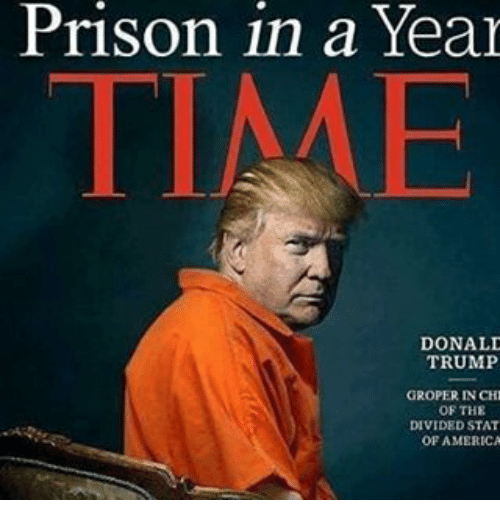 Image result for Donald Trump prison