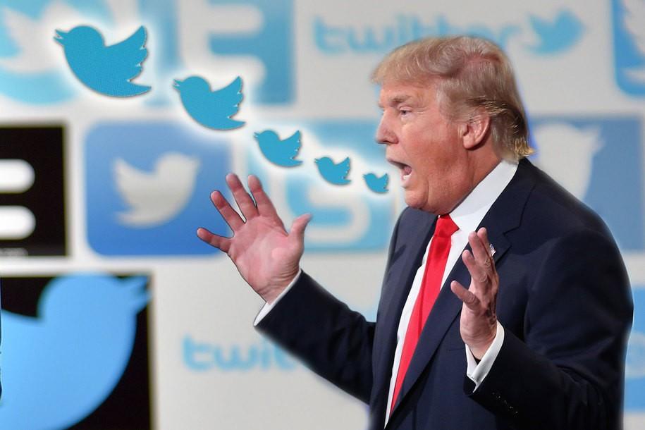 Trump tweets the most absurd OANN propaganda you'll see, well, this week