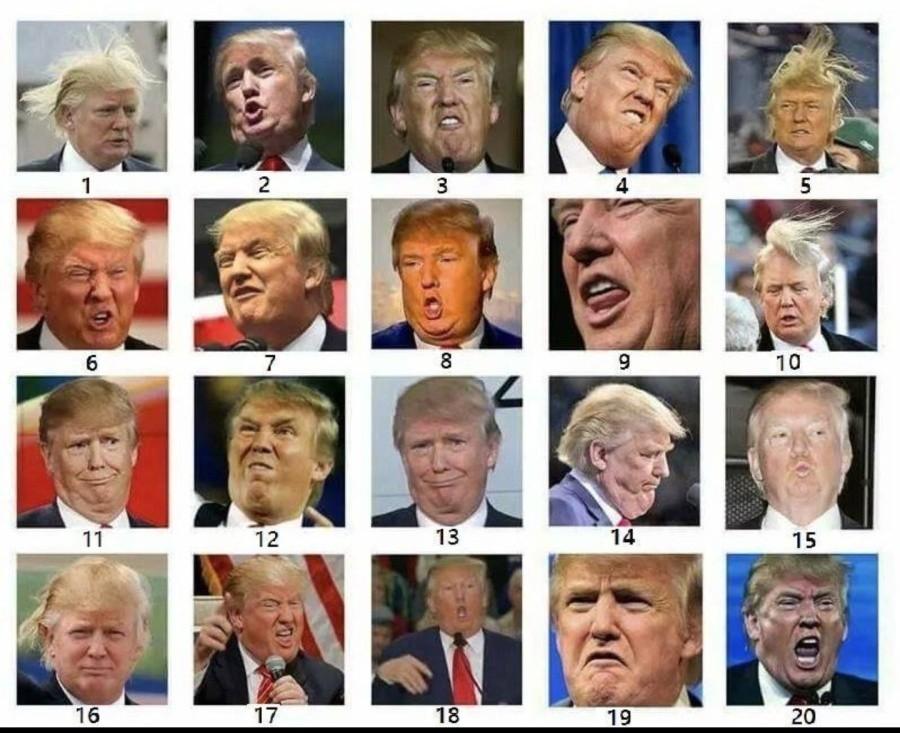 Donald Trump Pituus