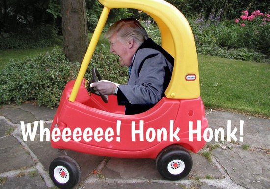 Donald trump pardoy graphic in play truck honking horn