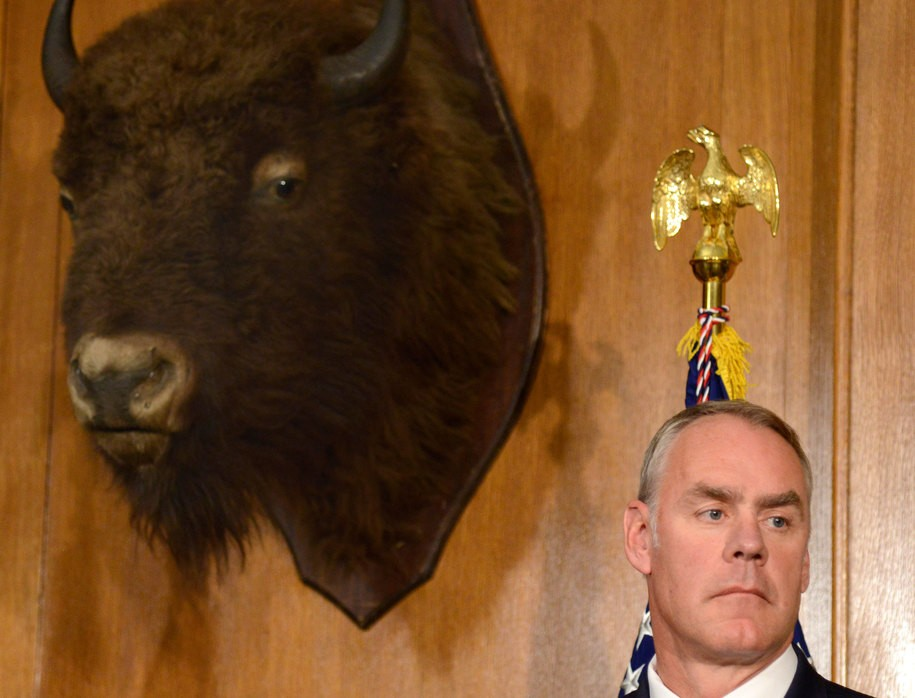 Forget Carson's $31,000 dining set. The new Trump cabinet 'he spent what?' is Zinke's $139,000 doors