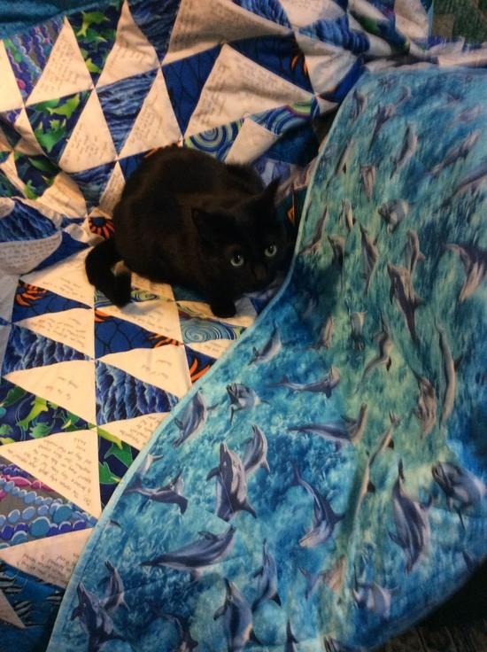 """Denise Oliver Velez's quilt, """"Ocean Waves"""""""