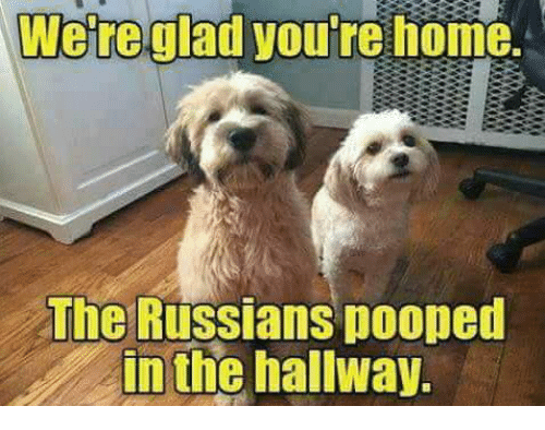 were-glad-youre-home-the-russians-pooped-in-the-hallway-21690572_1_.png