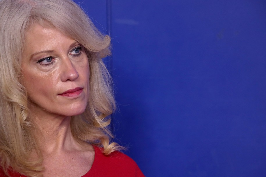 Kellyanne Conway compares Biden's VP choice to that of frat boy at end of a party: 'I need a woman'