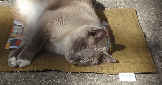 My cat Misty enjoying a new Pootie Pad,