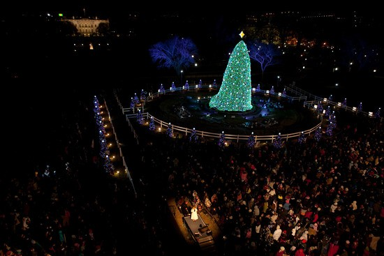 The National Christmas Tree shines bright during the lighting ceremony on the Ellipse in Washington, Dec. 9, 2010. (Official White House Photo by Lawrence Jackson)..