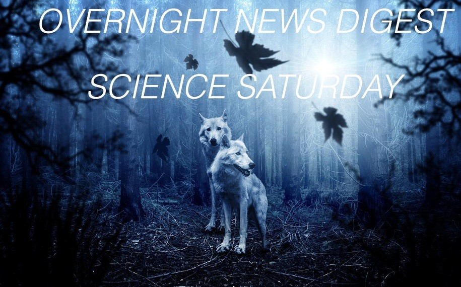 Overnight Science News Digest: The most important COVID-19 story this week