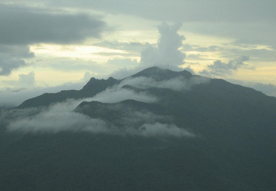 Aerial view to El Yunque Peak, El Yunque National Forest, Sierra de Luquillo, Puerto Rico