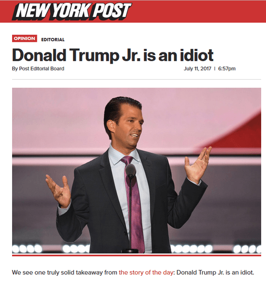 Image result for donald trump jr. is an idiot