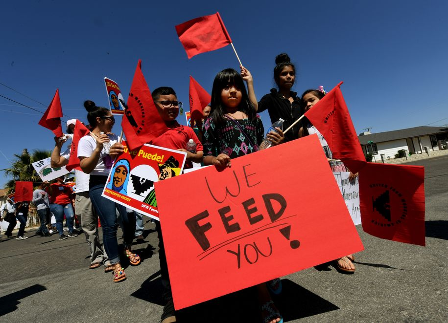Casey Rojas, 9, carries a 'We Feed You' banner as she shows support for farm workers marching against US President Donald Trumps anti-immigrant policies in the Central Valley agriculture town of Delano, California, on April 2, 2017. .Rural and agricultural counties voted heavily for Trump during last years presidential election but the field laborers who produce fresh fruits and vegetables for America fear deportations. / AFP PHOTO / Mark RALSTON (Photo credit should read MARK RALSTON/AFP/Getty Images)