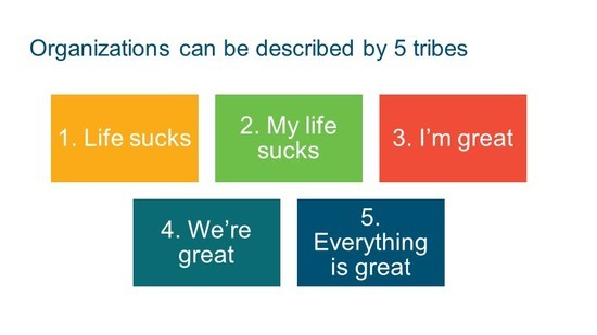 Slide - The stages of tribal leadership.