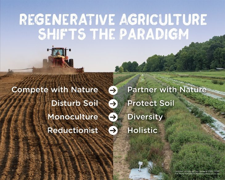 dailykos.com - This is what sustainable agriculture looks like