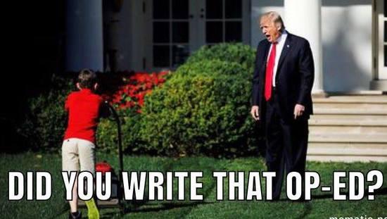 Op_ed_lawnmower_boy_trump.jpg