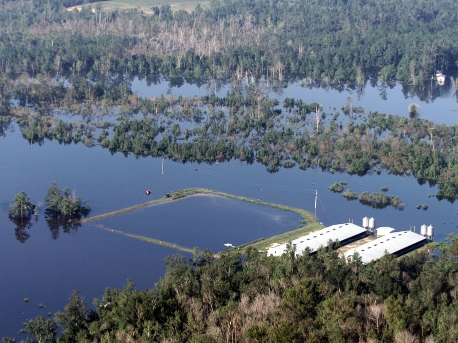Manure lagoons on hog farms like this one in eastern North Carolina flooded after Hurricane Floyd swept through in 1999, creating environmental and health concerns for nearby rivers. Farmers are worried that the scenario will repeat after Hurricane Florence hits this week.