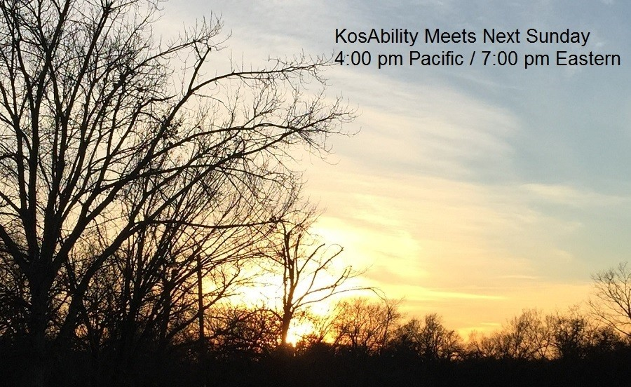"KosAbility: Join us Sunday 1/27 for ""The Effects of Untreated Pain"""