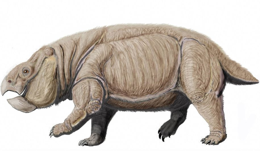 Giant near-Mammal from the Age of Dinosaurs