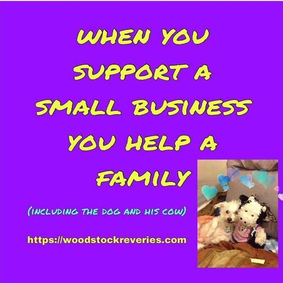 Help our family store~