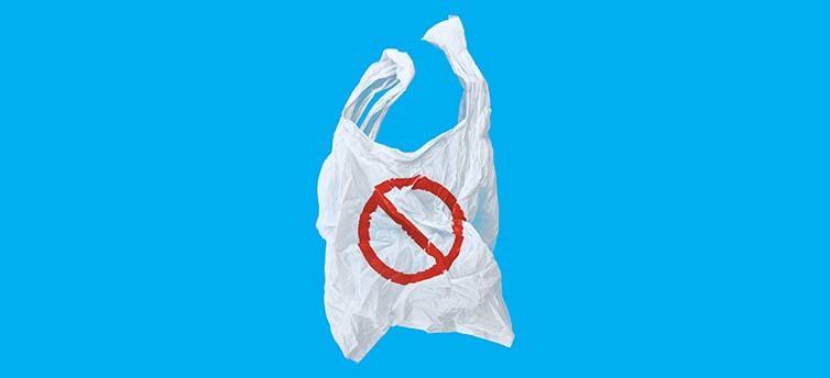 A Plastic Bag Epiphany