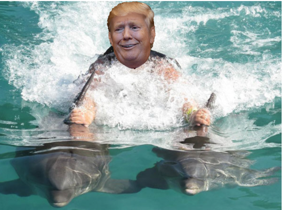 Forget Shooting Someone On 5th Ave.- Forget Being In Love With Kim - Donald Trump Talks To Animals!