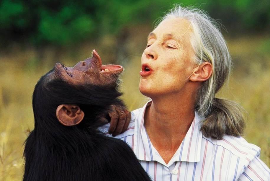 Happy 85th Birthday Jane Goodall