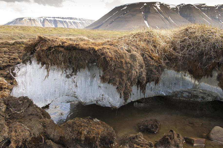 "Thawing Permafrost: ""25% of the Northern Hemisphere is permafrost"""