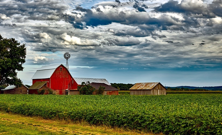"""Trump's farm """"subsidy"""" scam may not work so well this time."""