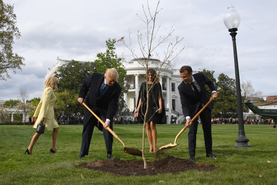 The oak tree Trump and Macron symbolically planted together has literally died