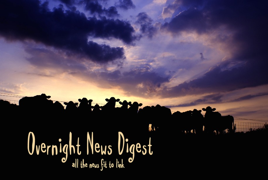 Overnight News Digest: Holsteins critically endangered by massive inbreeding