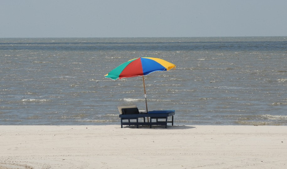 All of Mississippi's 21 Gulf Coast beaches have been closed due to algae bloom