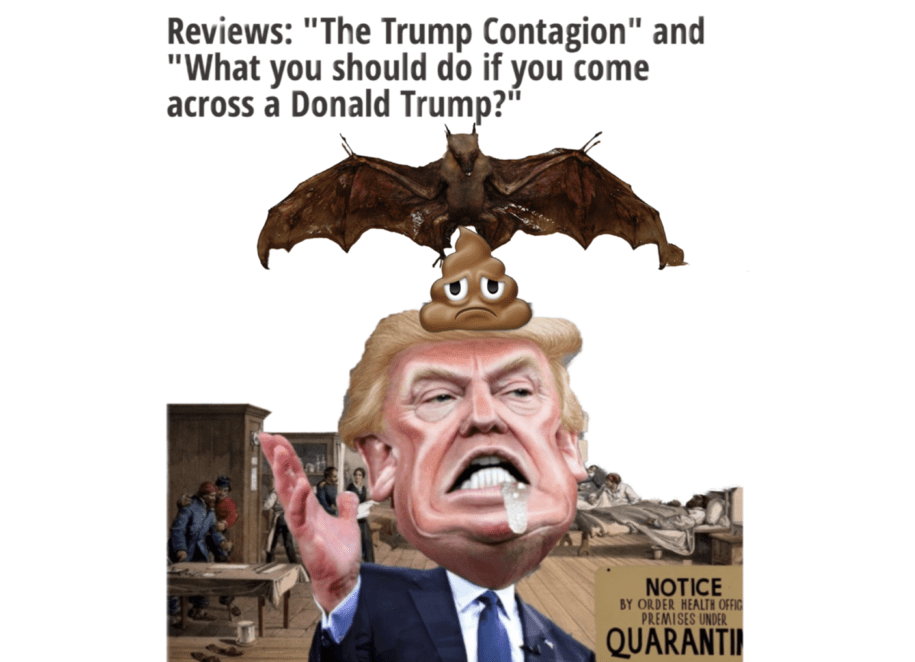 Snarky photoshops and words like batshit crazy in titles mark the era of Trump.