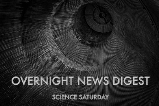 Overnight News Digest: Lizards poop on the biggest rocks