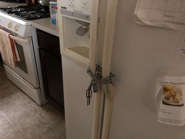 PadlockedRefrigerator.jpg