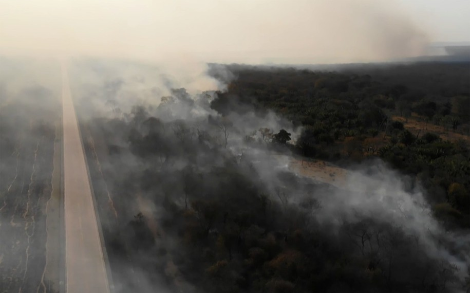 The Amazon rainforest is burning, and the people who can stop it are doing nothing