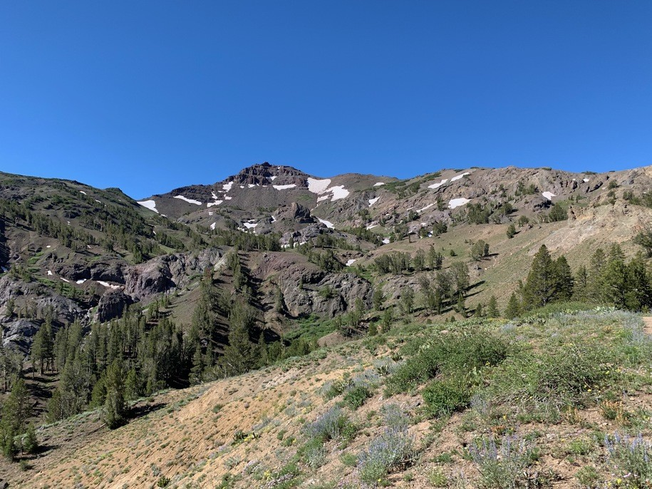 Kitchen Table Kibitzing: Sonora Pass Revisited